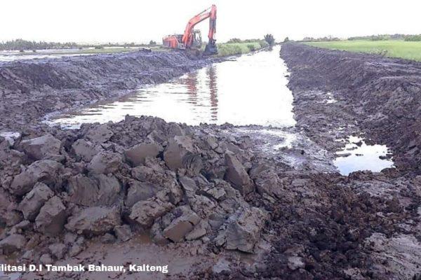 Program Lumbung Pangan Baru, Kementerian PUPR Rehabilitasi 85.500 ha Jaringan Irigasi di Kalteng