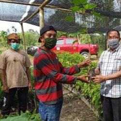 Dishut Sumbar Serahkan Bantuan Bibit Kepada Kelompok Tani Hutan di Bonjol Pasaman