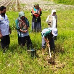 Puluhan Penyuluh Sijunjung Ikuti Bimtek BPP Kostratani dan Kesuburan Lahan
